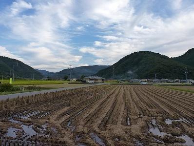 岡山県教員採用試験合格の知らせ (ノ゚ο゚)ノ