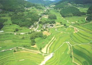 八柳 念佛踊 (岡山県久米郡美咲町)