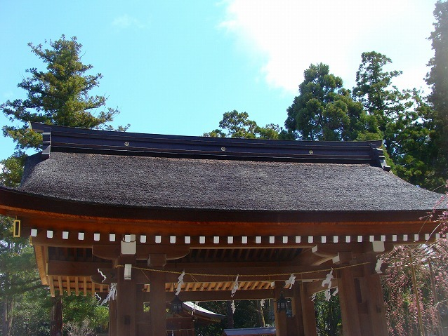 空 と 屋根 (社寺)