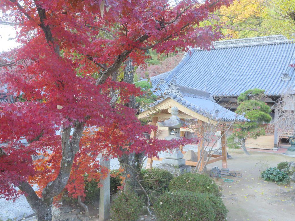 祖山妙覚寺 手水舎 建て替え屋根工事