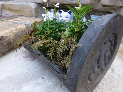 おちゃむの『よろこびの庭』-軒巴アップ