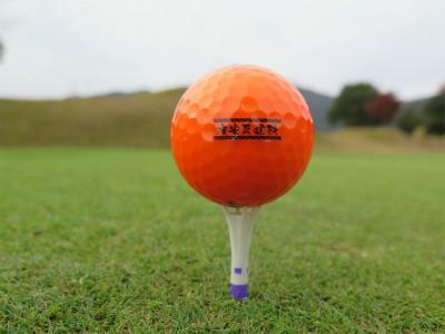 ひろやす瓦 ゴルフボール