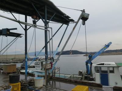 瀬戸内海 牡蠣工場