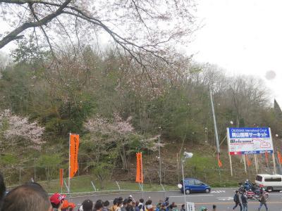 国際サーキット 葉桜