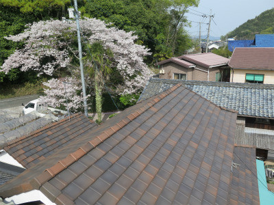 窯変瓦 桜