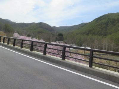 長野 和田峠