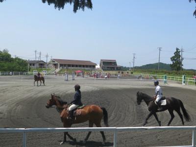 岡山乗馬クラブ