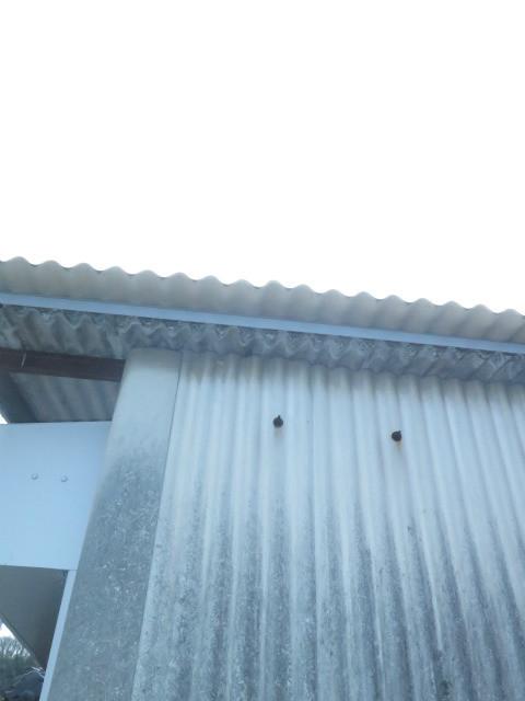 スレート屋根改修後