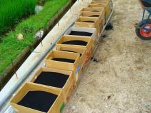 おちゃむの『よろこびの庭』-活性炭箱詰