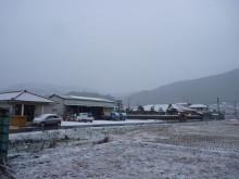 おちゃむの『よろこびの庭』-20.12.30 雪化粧