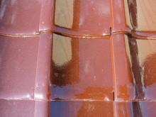 おちゃむの『よろこびの庭』-清水様陶器瓦後 1枚全体