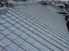 おちゃむの『よろこびの庭』-セメント大屋根