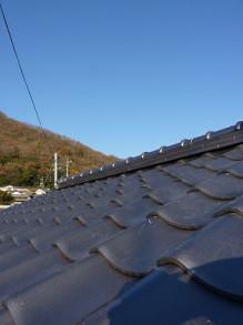 おちゃむの『よろこびの庭』-山本(牧山) 後屋根上から
