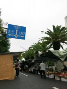おちゃむの『よろこびの庭』-2013西日本ブロック高知 日曜日高知探索